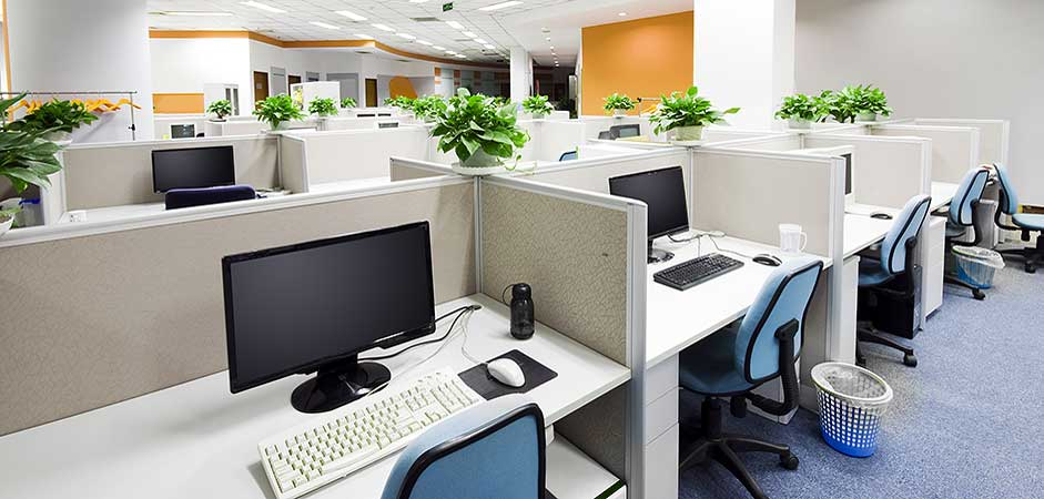 A cubicled office space with plants for every stall.